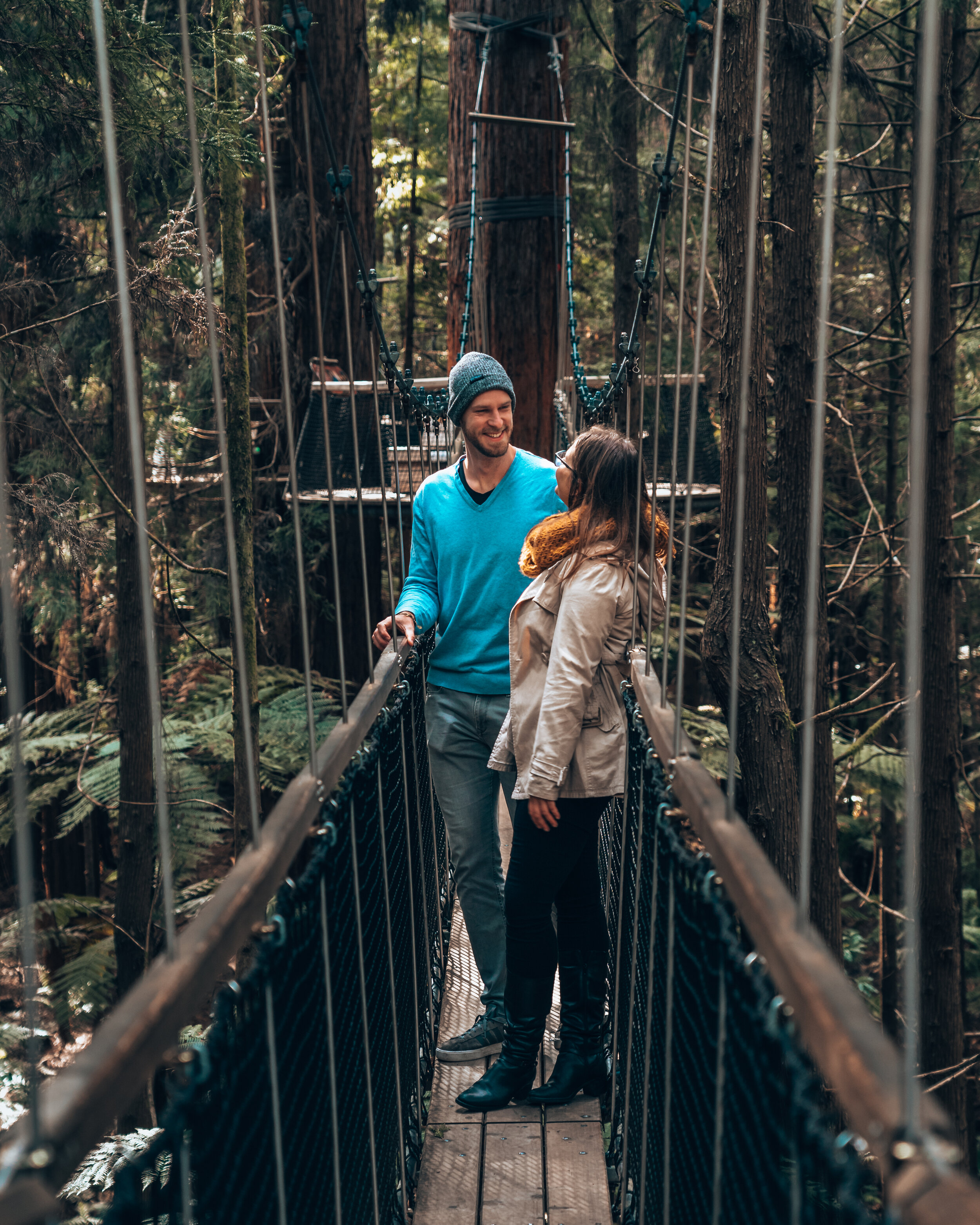 Redwood treewalk what to do rotorua New Zealand