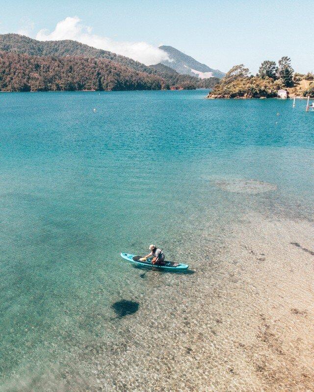 Stingrays Elaine Bay Best Places to see wildlife New Zealand
