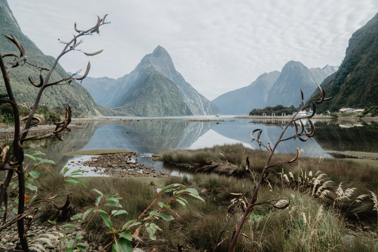 Milford Sound  How to start a travel blog guide