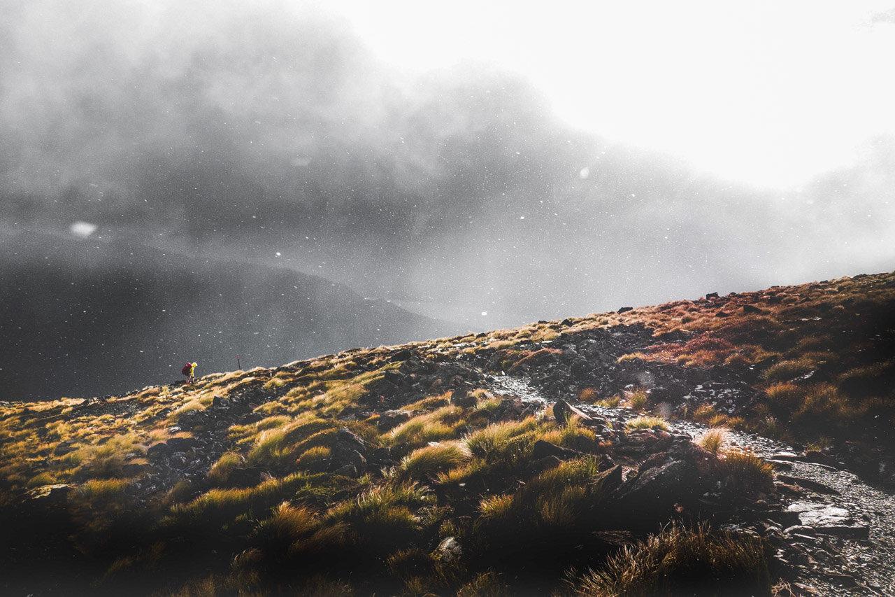 Kepler Mire (Dead Marshes) in Fiorland National Park.