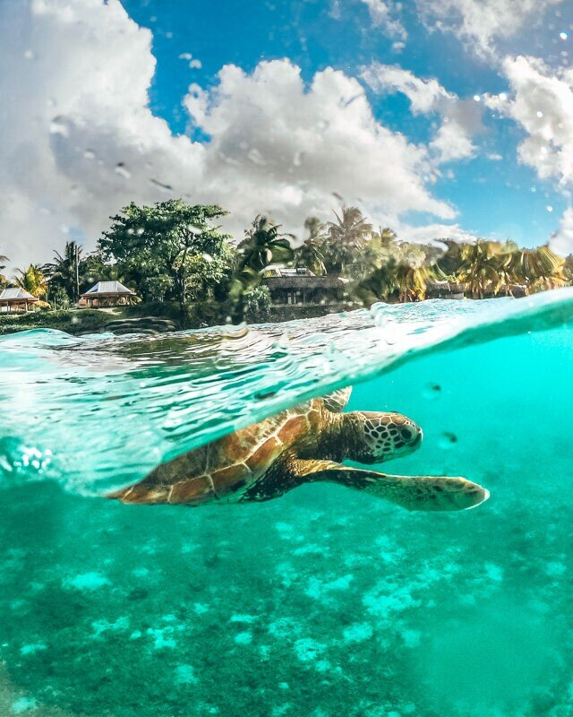 GoPro Dome Half Underwater Shot