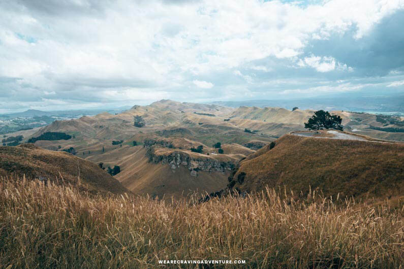Te Mata Peak New Zealand North Island Road Trip