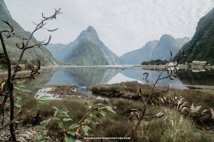 New Zealand South Island Road Trip Milford Sound