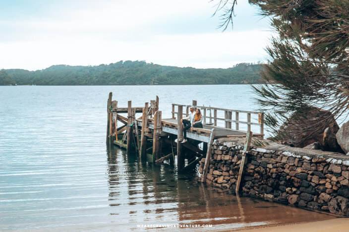 Kiwi spotting on Ulva Island -