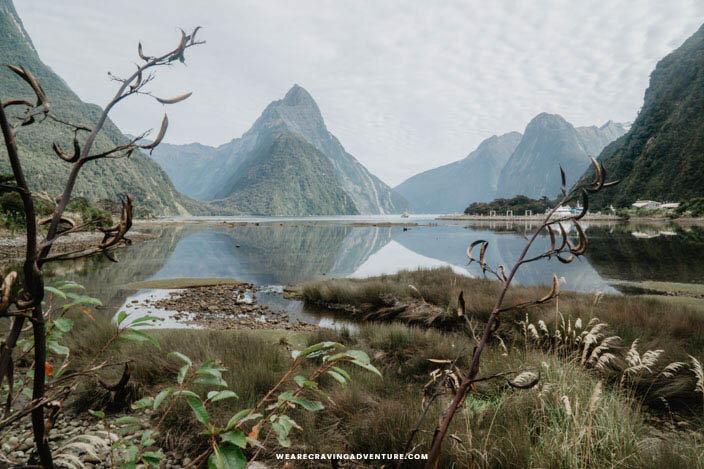 New Zealand Milford Sound-14.jpg