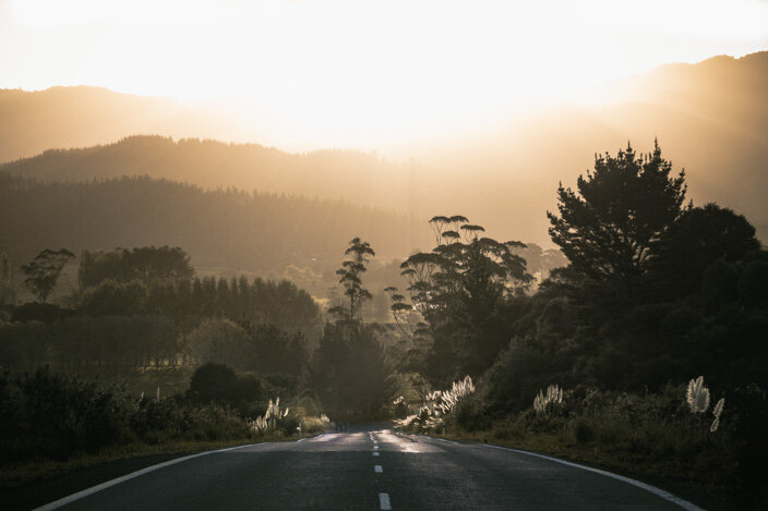 New Zealand Coromandel-12.jpg