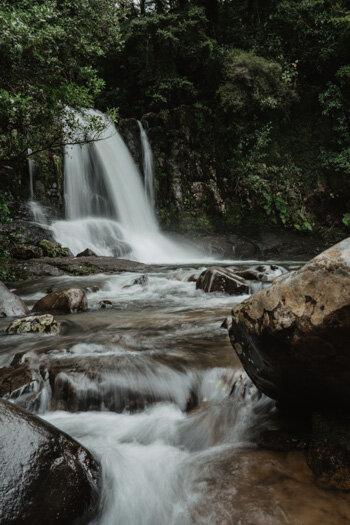 New Zealand Coromandel Waiau Falls