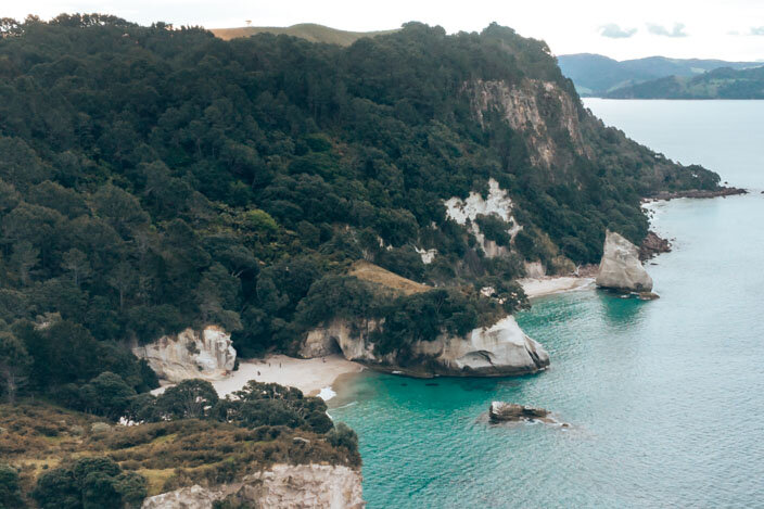 New Zealand Coromandel-8.jpg