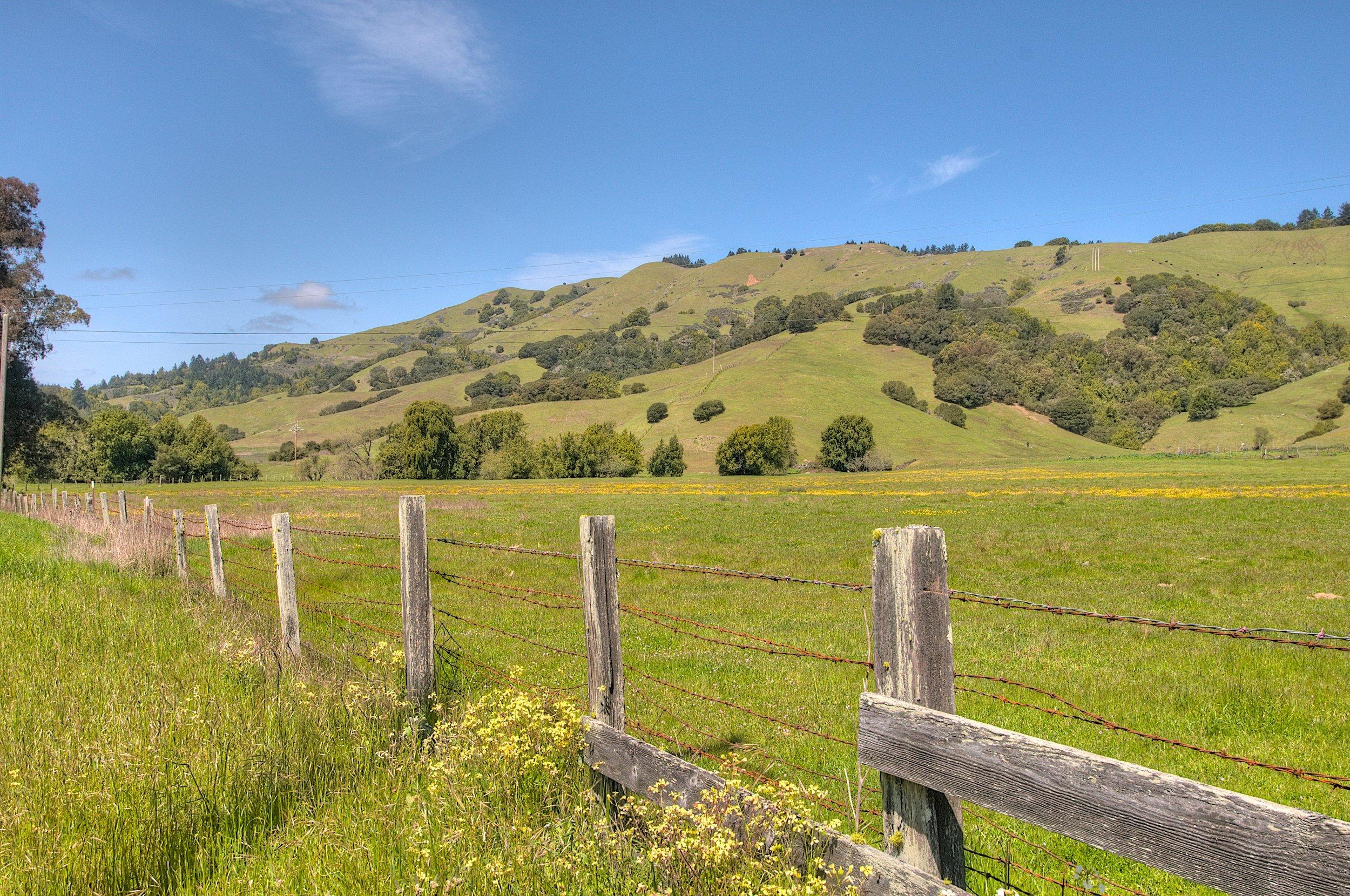 West Marin (1).jpg