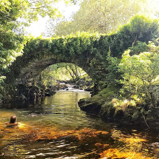 ESCAPE 🧜🏻‍♀️ No crowds, no pollution, no queues.  Just a swimming costume, towel and nature doing its thing 🐛🕷🌱 #sharetheswimlove #wildswimming #Visitwales #wildswimsnowdonia #snowdoniagram #cymruambyth #Cymru #nofiogwyllt #outdoorswimmingsociety
