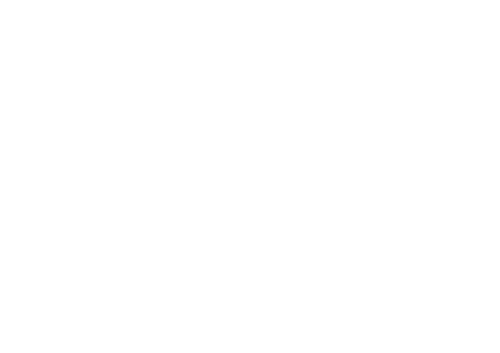 Fast+company+transparent+logo.png