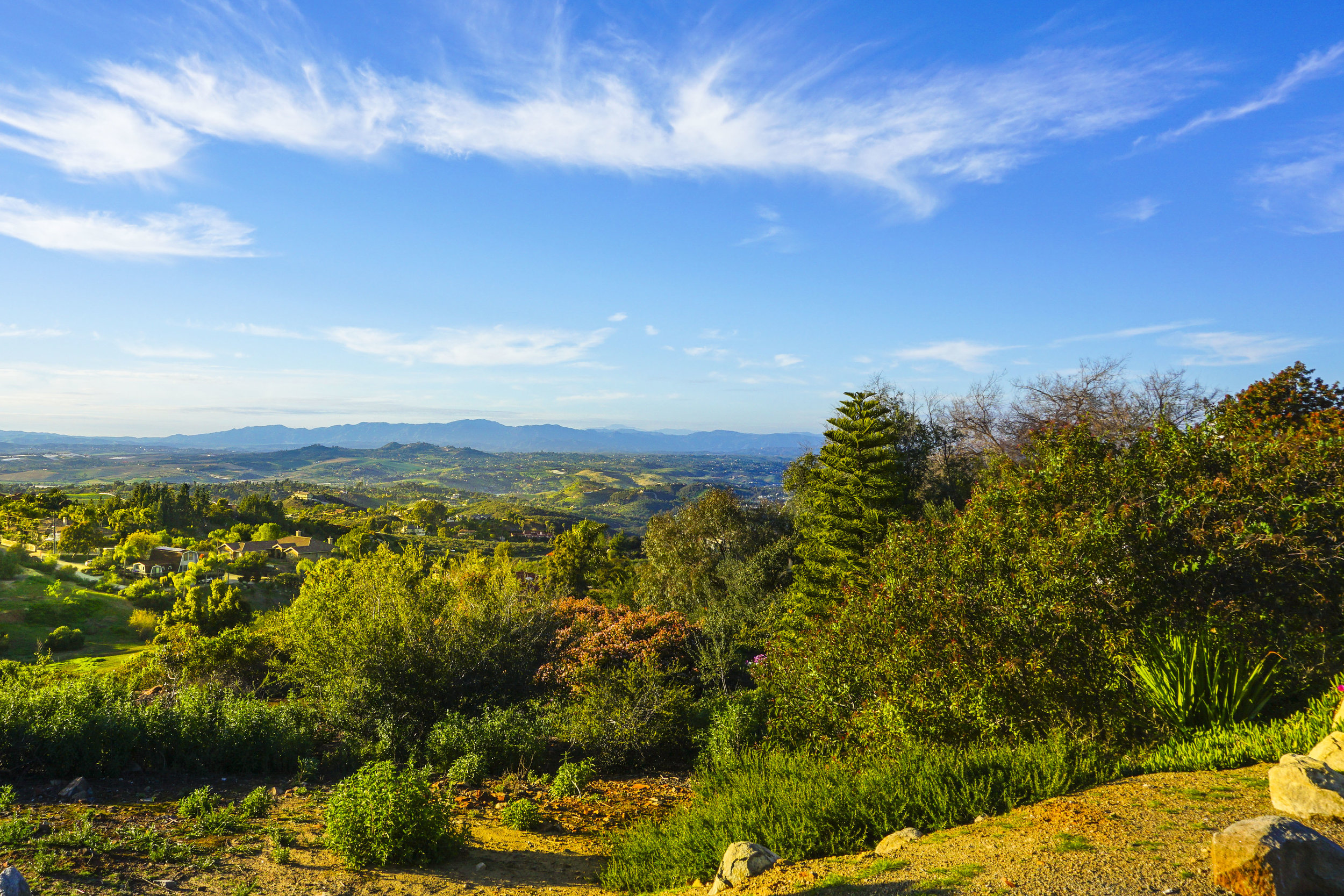 views-elevado-hills.jpg