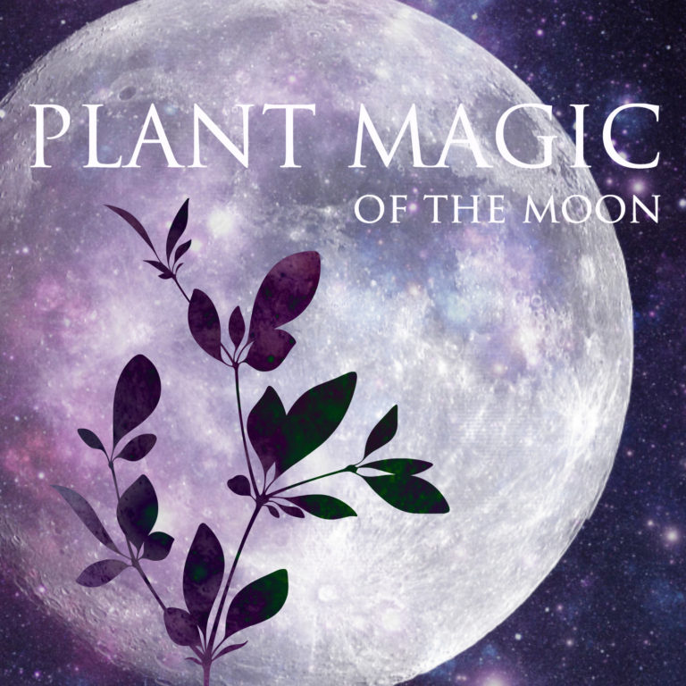 plant-magic-of-the-moon-tile-768x768.jpg