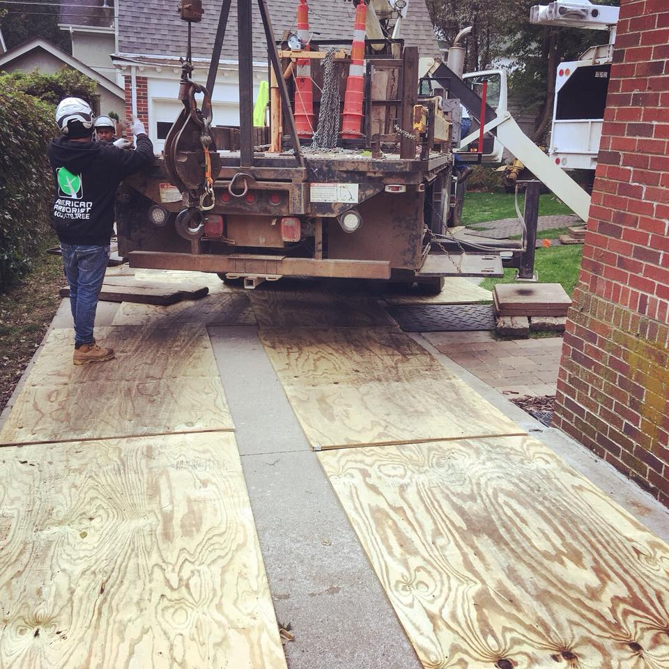 mat-plywood-protection-american-arborist.jpg