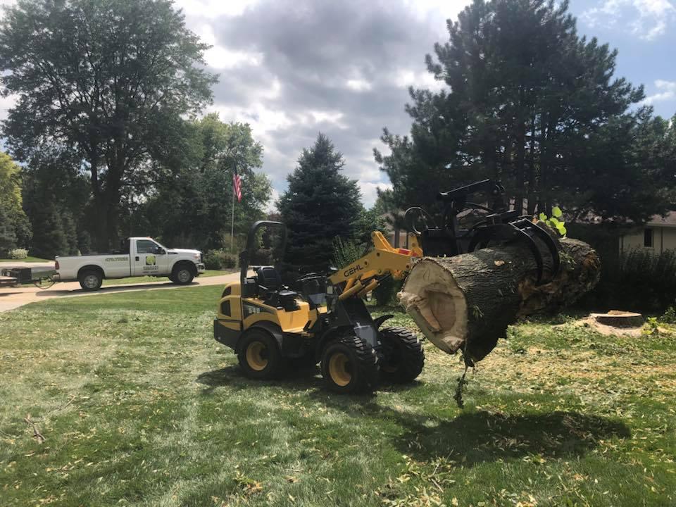 articulating-loader-manicured-lawn-american-arborist.jpg