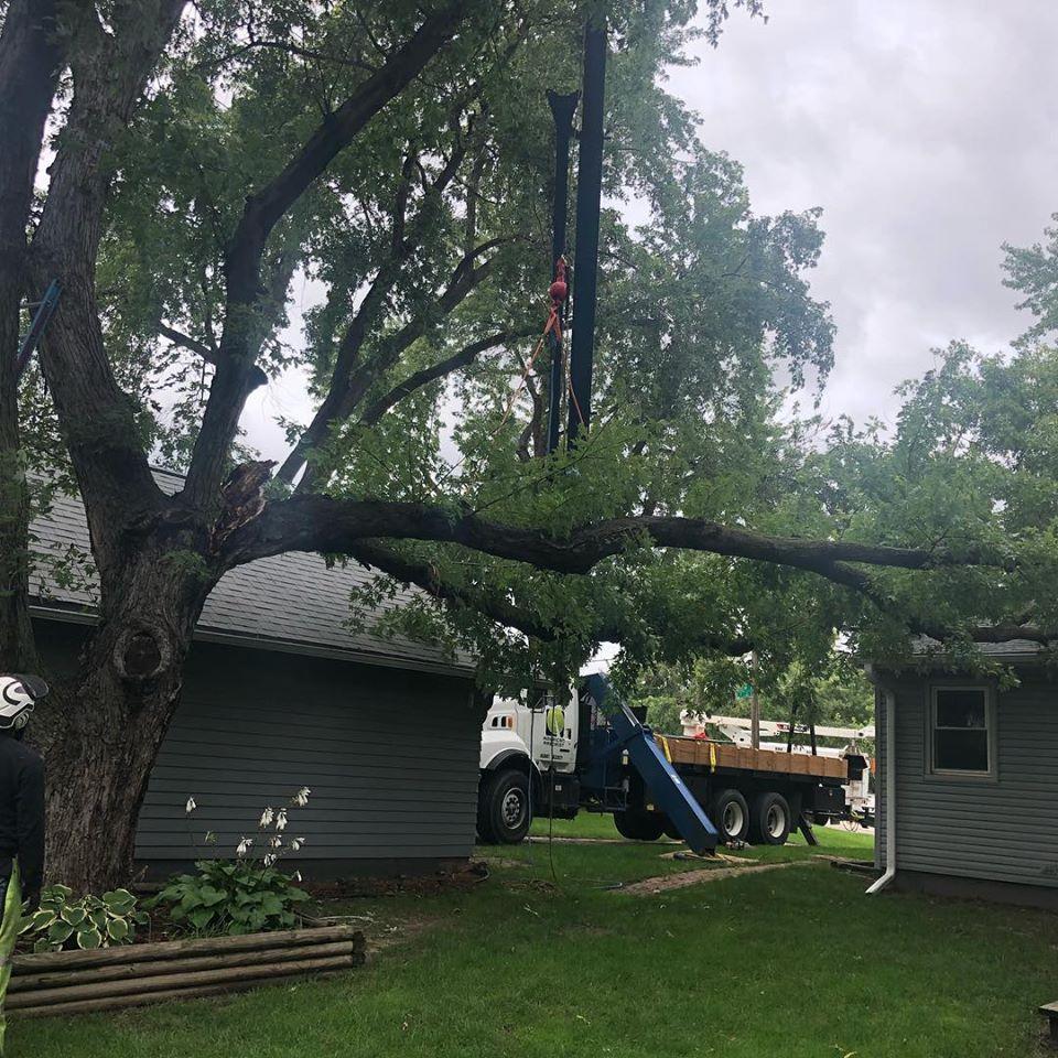 storm-damage-branch-crane-removal.jpg