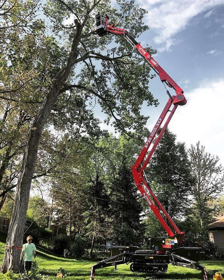spider-lift-tree-removal-american-arborist.jpg