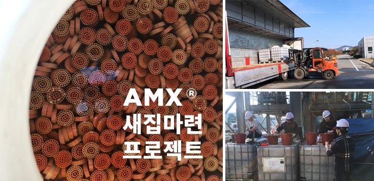 AMX_1.jpg