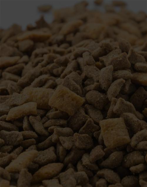 양질의 질소비료로사료 및 식량 생산 - 사료 비용 절감