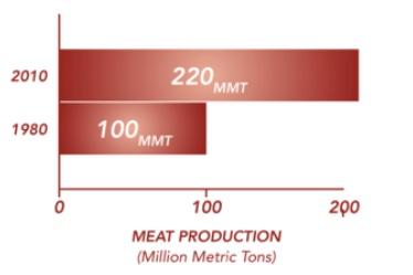 1980년~ 2010 육류/곡류 생산 증가표