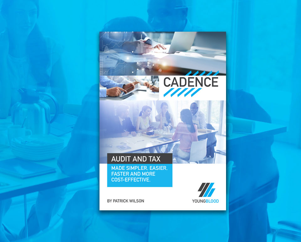 FREE EBOOK - AUDIT AND TAX MADE SIMPLE, EASIER, FASTER AND MORE COST-EFFECTIVE.