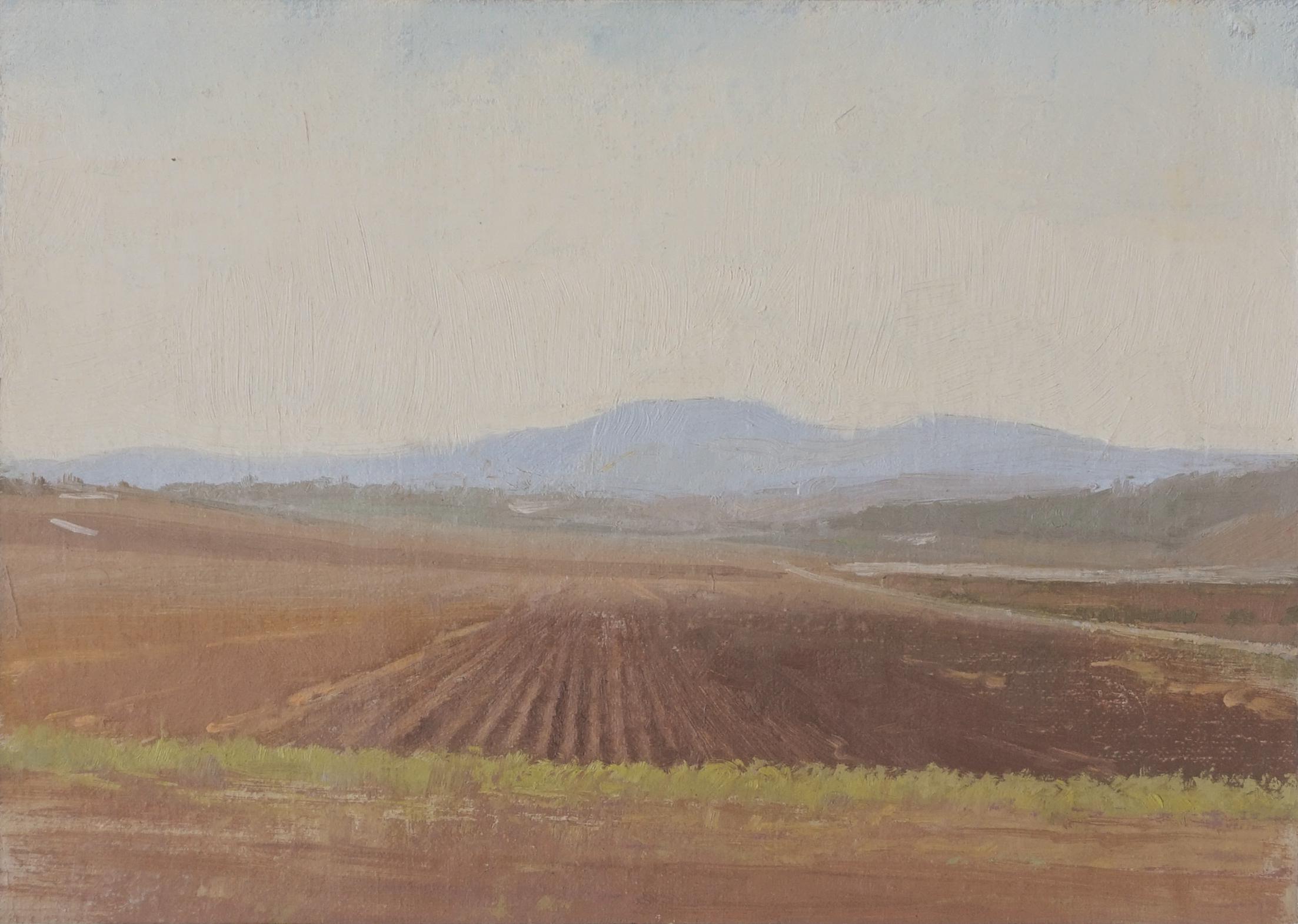 Oil on Canvas, 25X18 cm, 2016