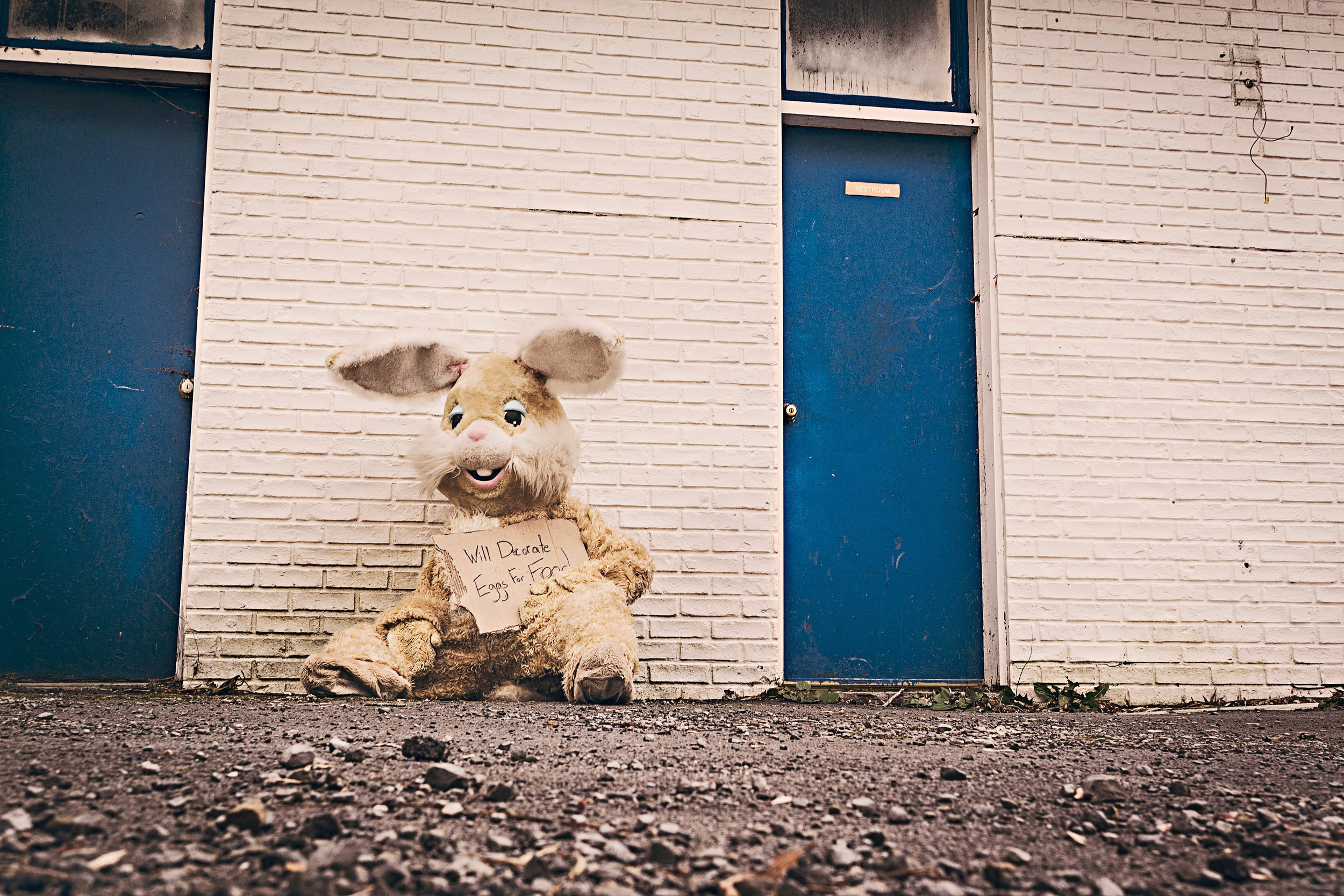 begging-costume-cuddly-toy-297.jpg