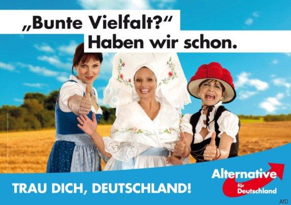 Bild: AfD, Bundestagswahlkampf 2017/Thor Kunkel