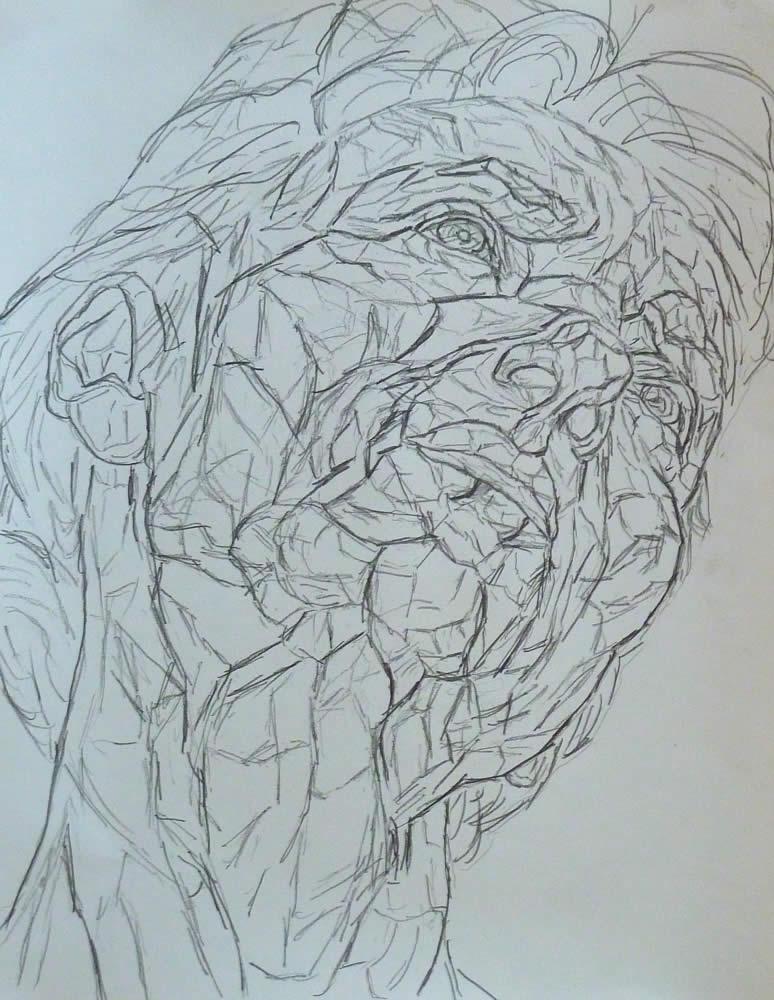 drawing-development-3