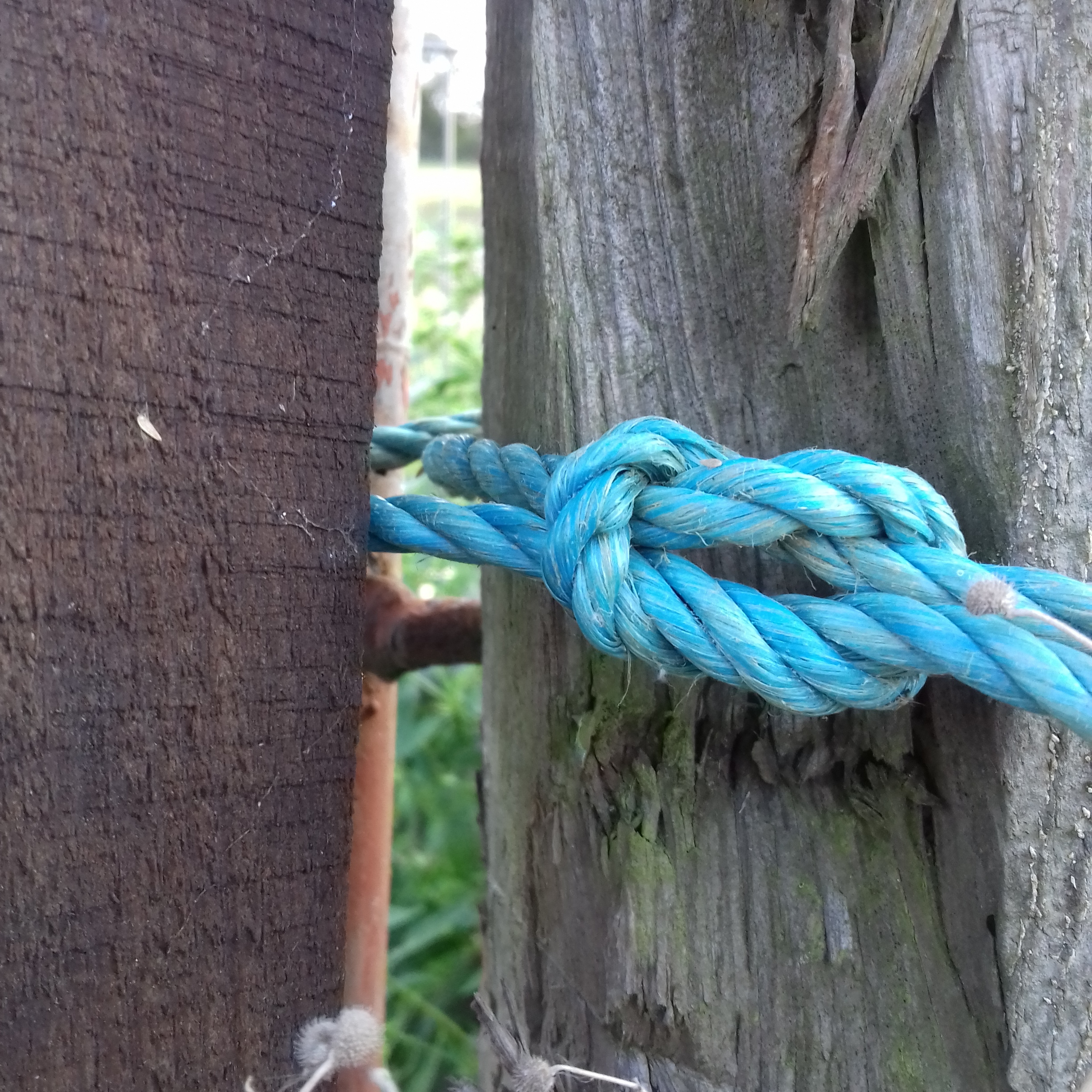 Knots,KNots,KNots! - An introduction to the basic knots you need for putting up tarpaulins, rope swings and other outdoor activities with children,2 hour workshop. £30 per setting plus travel. I can come to you.email: jo@timetoplayearlyyears.com
