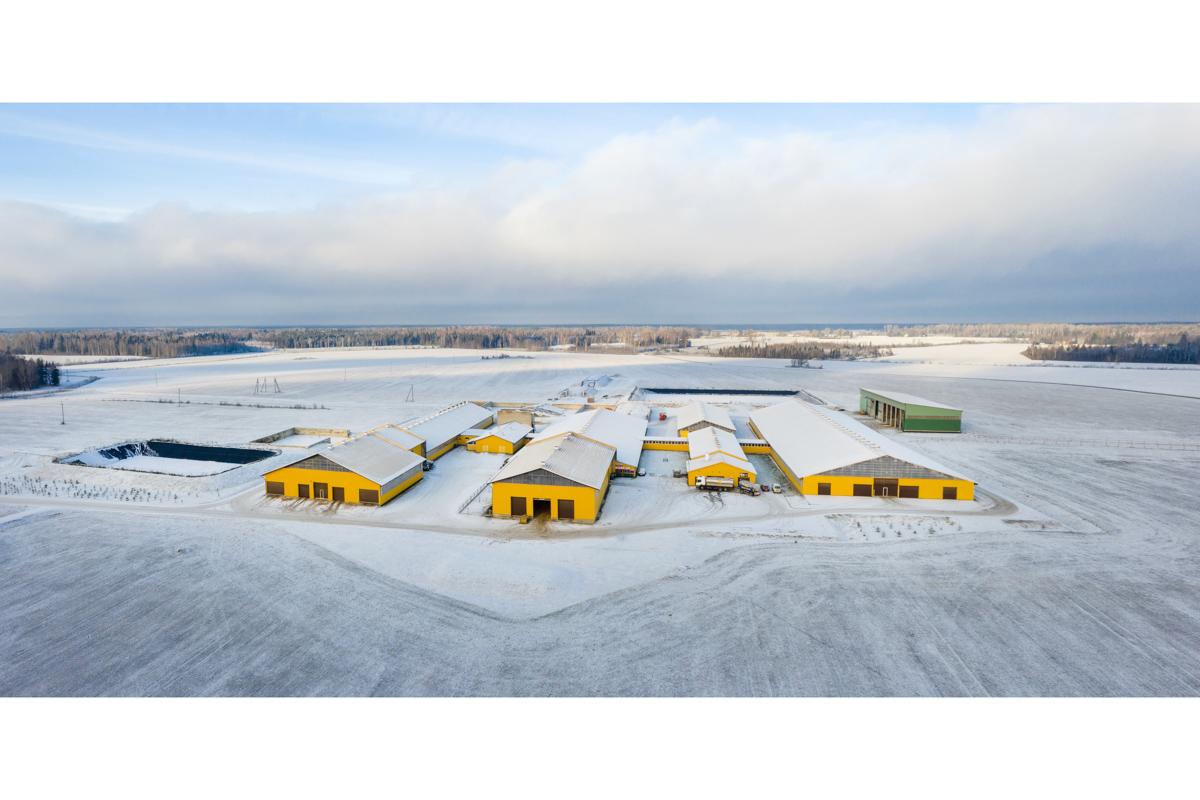 droonifotod reklaamfotod fotograaf ehitusobjektid põllumajandus farmid laudad -13.jpg