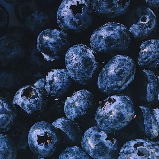 berries-bilberry-blueberries-1395958.jpg
