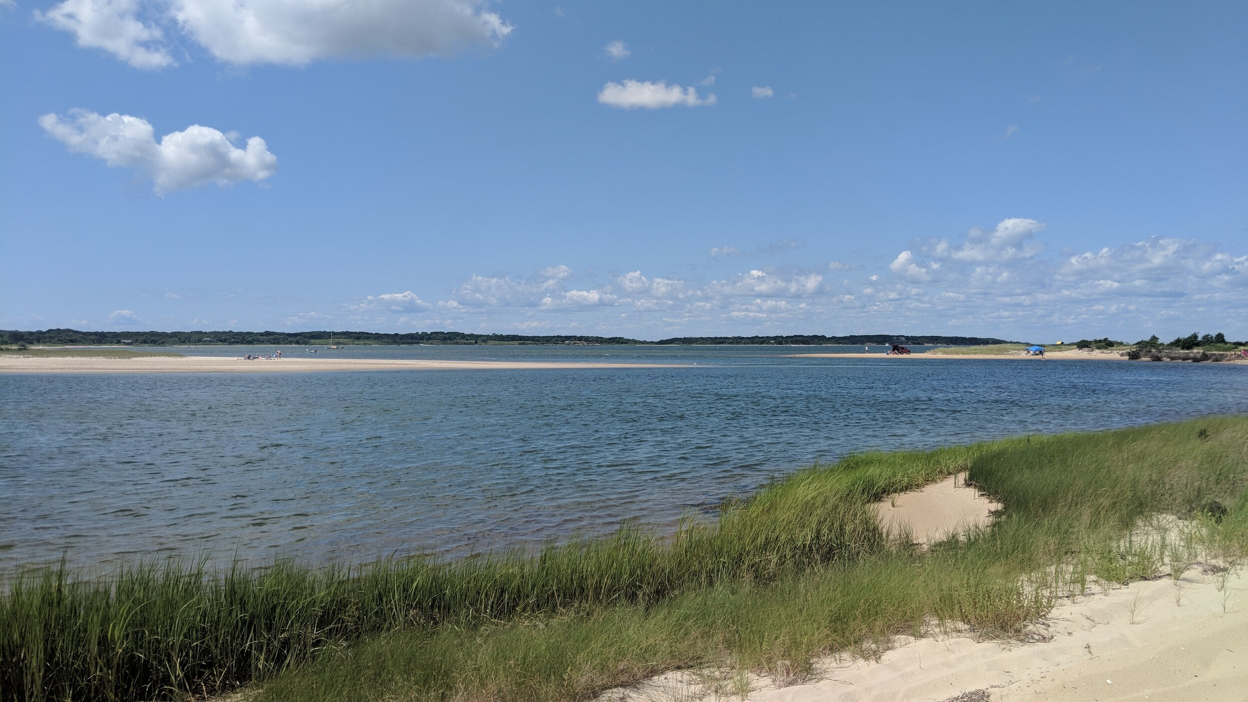 Click here  to learn more about Trustees properties on Martha's Vineyard