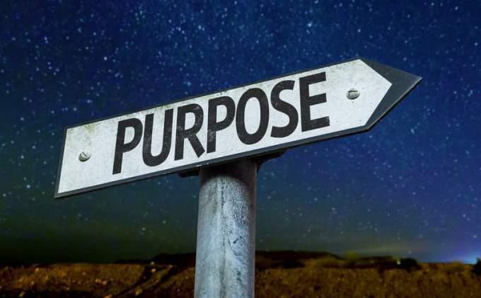 purpose2.jpg