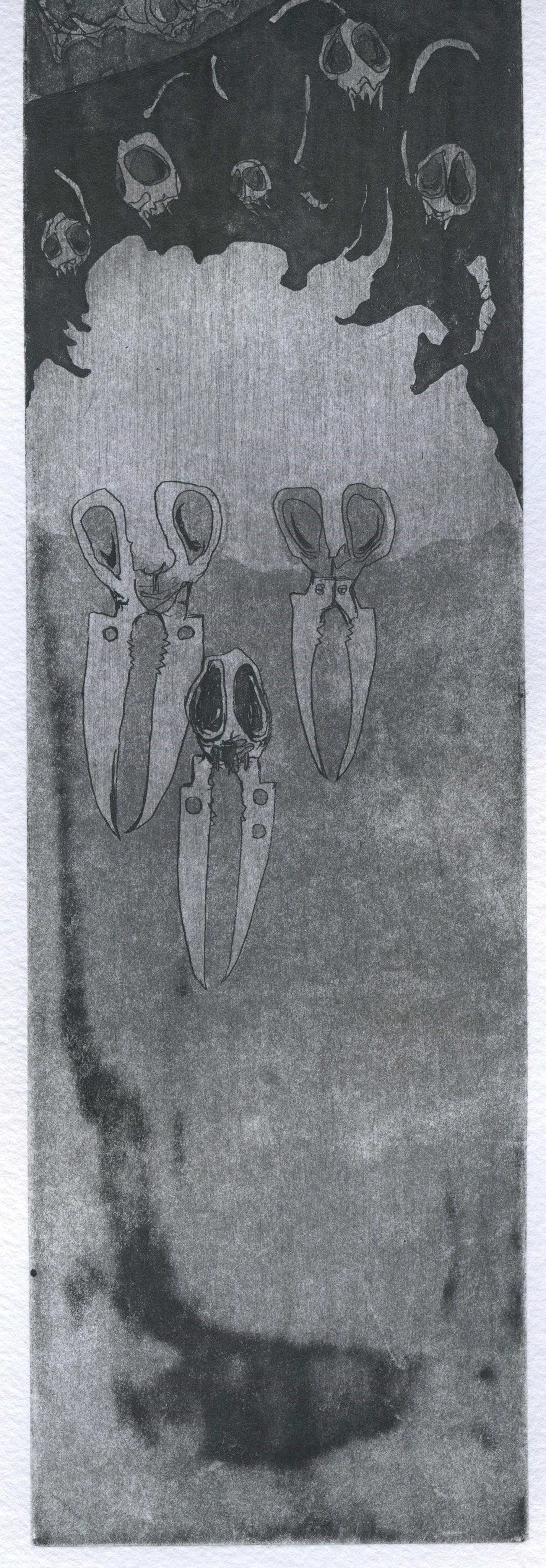17,5 x 55 cm