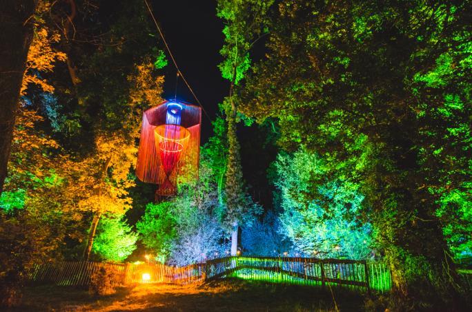 campbestival_dinglydell_woodland_nightlights_mik4987-2-21474452544.jpg