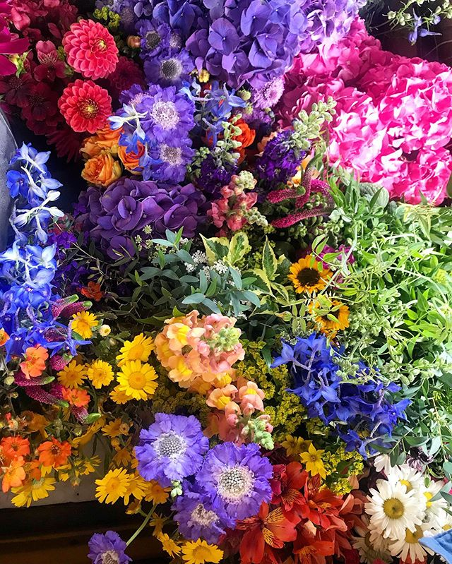 Happy Wedding Weekend you beautiful people!!@thoroughlygoodgems @alexaisthorpe 🌈🥰🥂 #wedding #weddingflowers #colour #wildflowers #festivalwedding