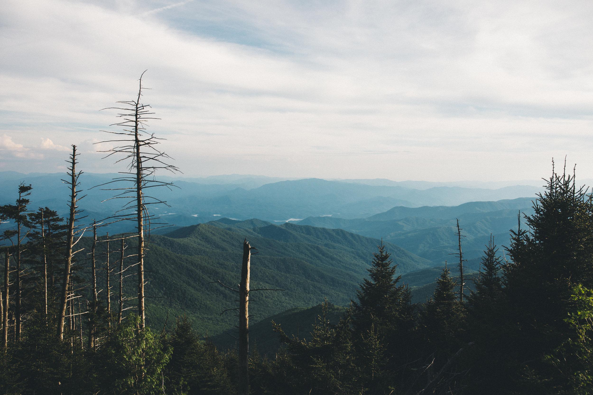 Episode 1: My Appalachian Trail Thru Hike -