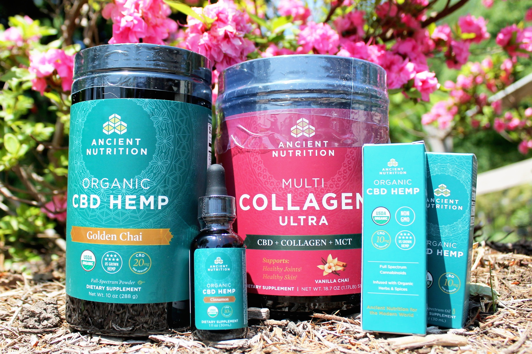 heal from within using CBD - WHERE AWARENESS AND EDUCATION MEETS THERAPEUTIC-GRADE PRODUCTS
