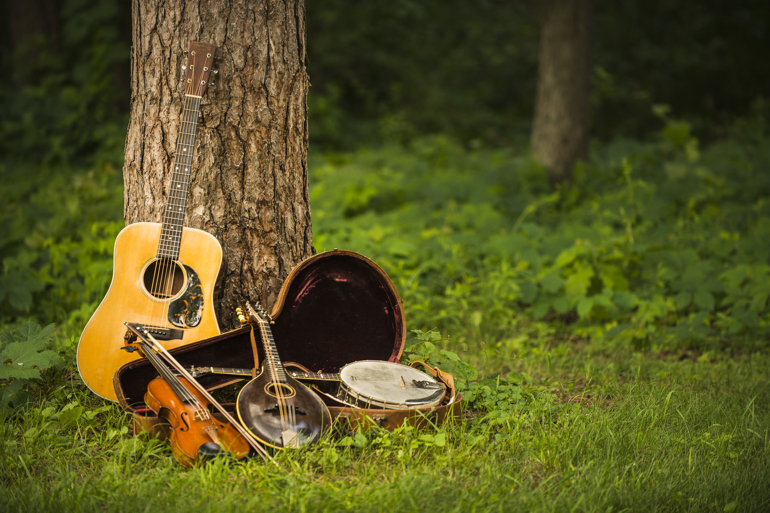Music and Songs - We have several drums, percussion and string instruments we'll simply have fun with. The drums are a favorite!We'll learn songs like 'Come By the Hills', 'Love You', 'Whitethroat Song' and 'Little Bird'