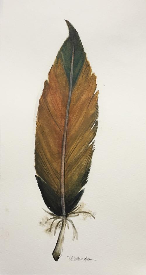 feathers 3rev.jpg