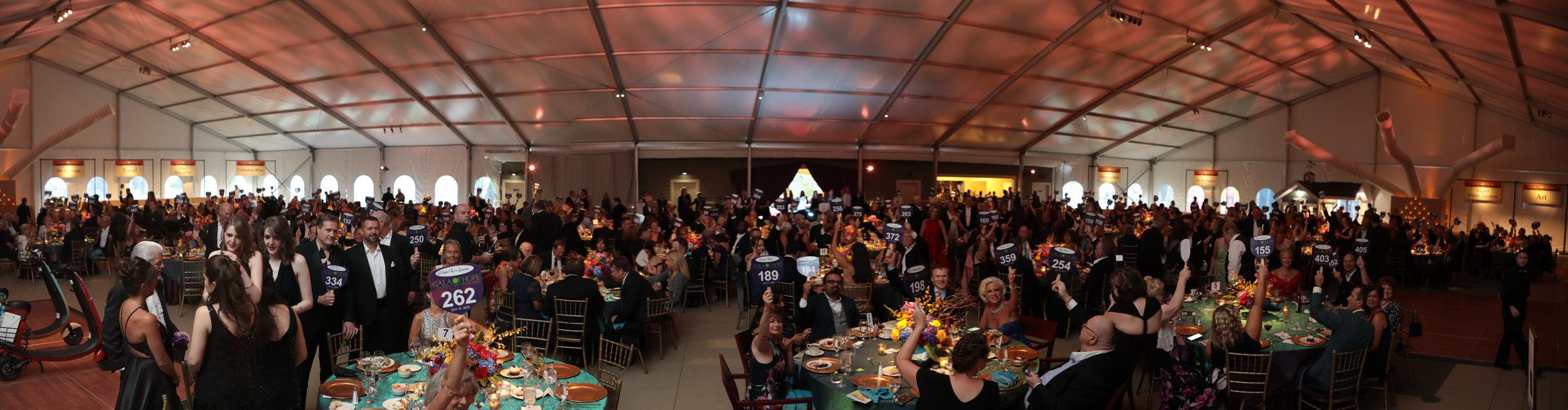 Gala of Hope_ml--5.jpg
