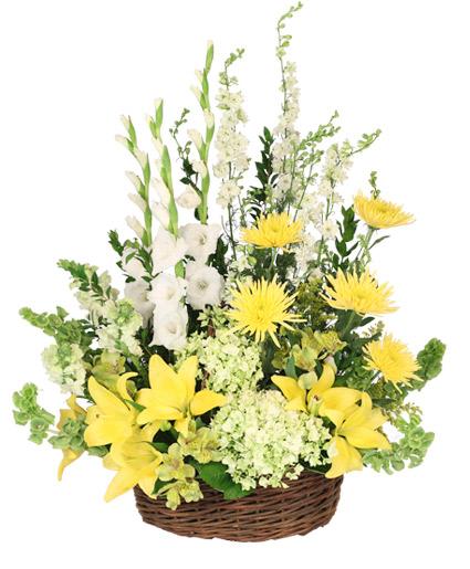whimsical-whisper-basket-arrangement-SY022518.425.jpg