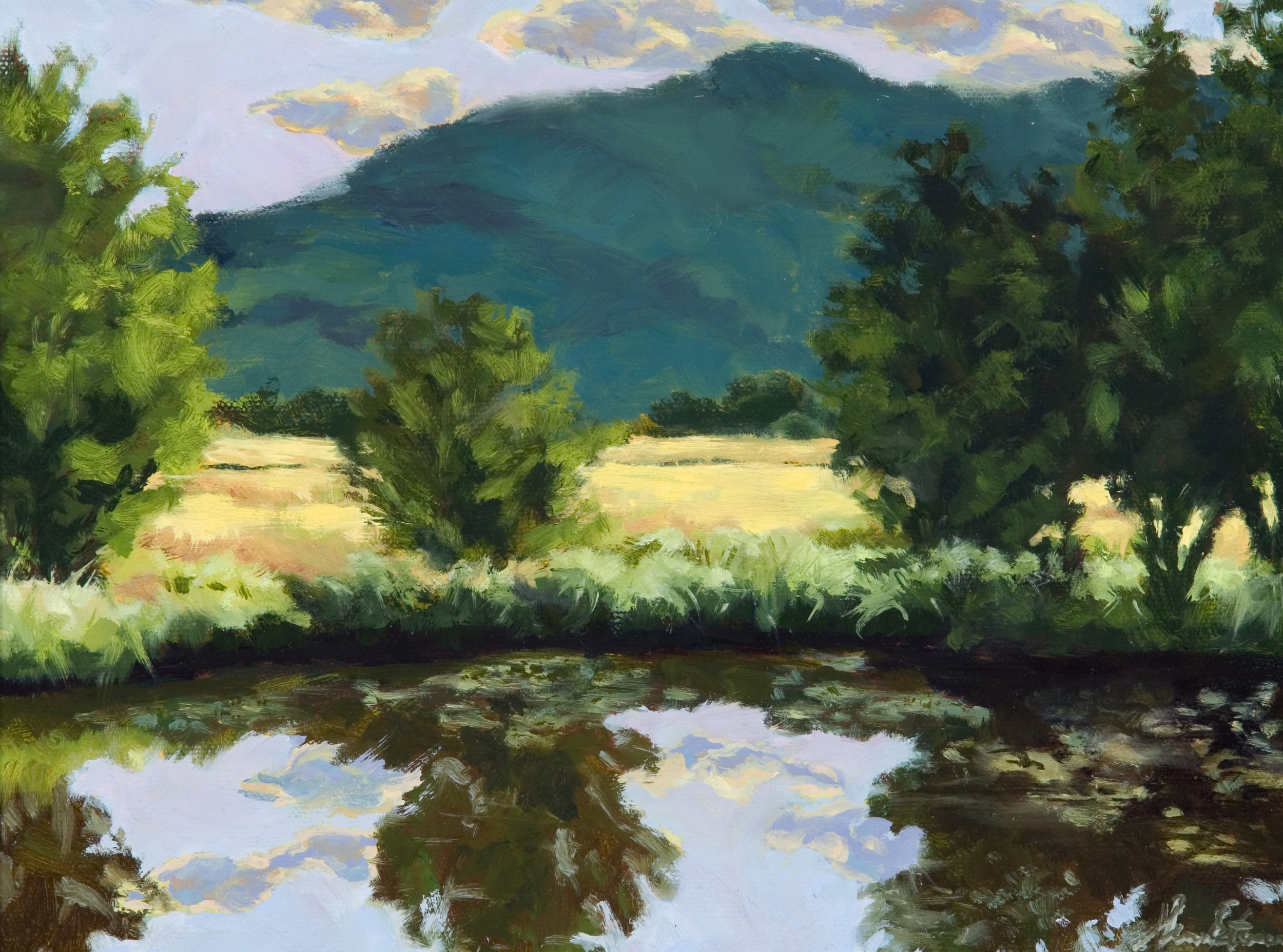 Pond Series