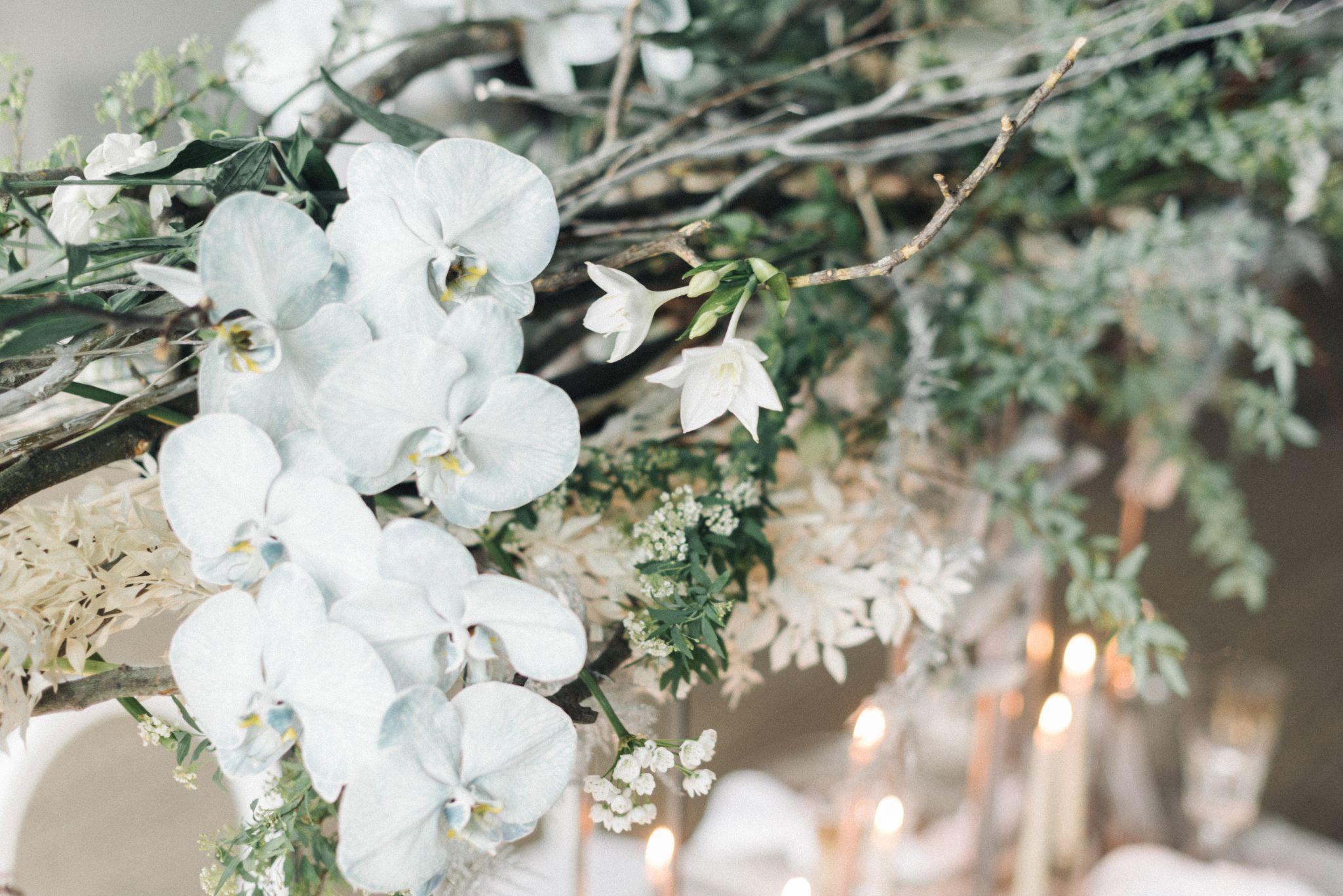 olio-peabody-boston-lesbian-wedding-style-daylynn-designs79.jpg