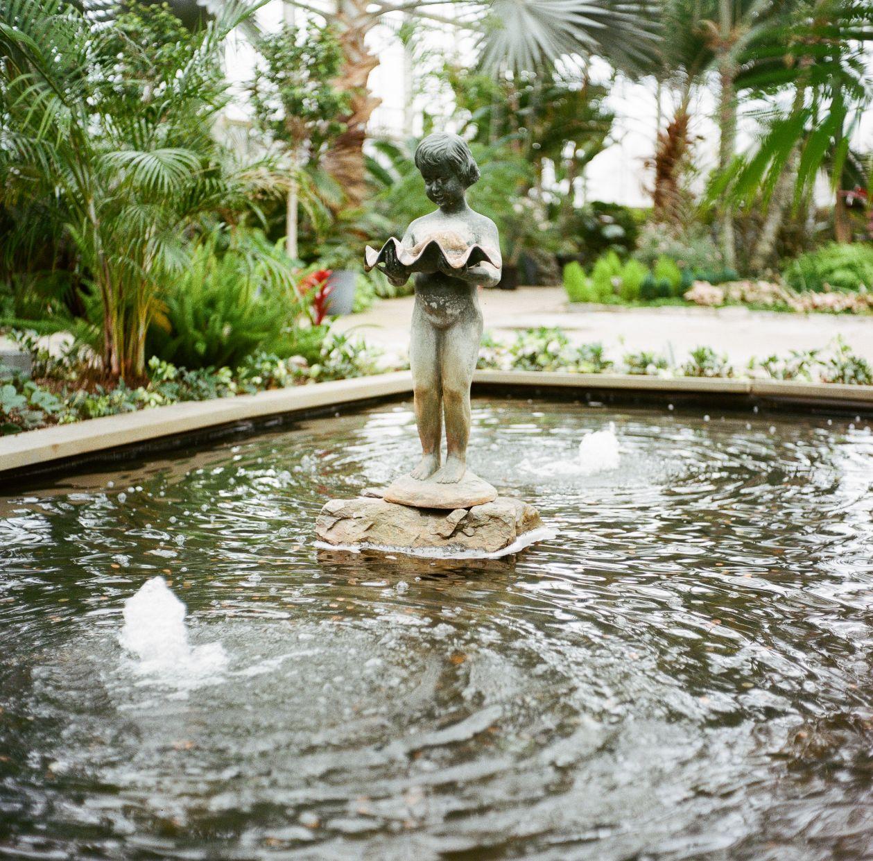 roger-williams-park-botanical-tropical-peach-daylynn-designs030.jpg