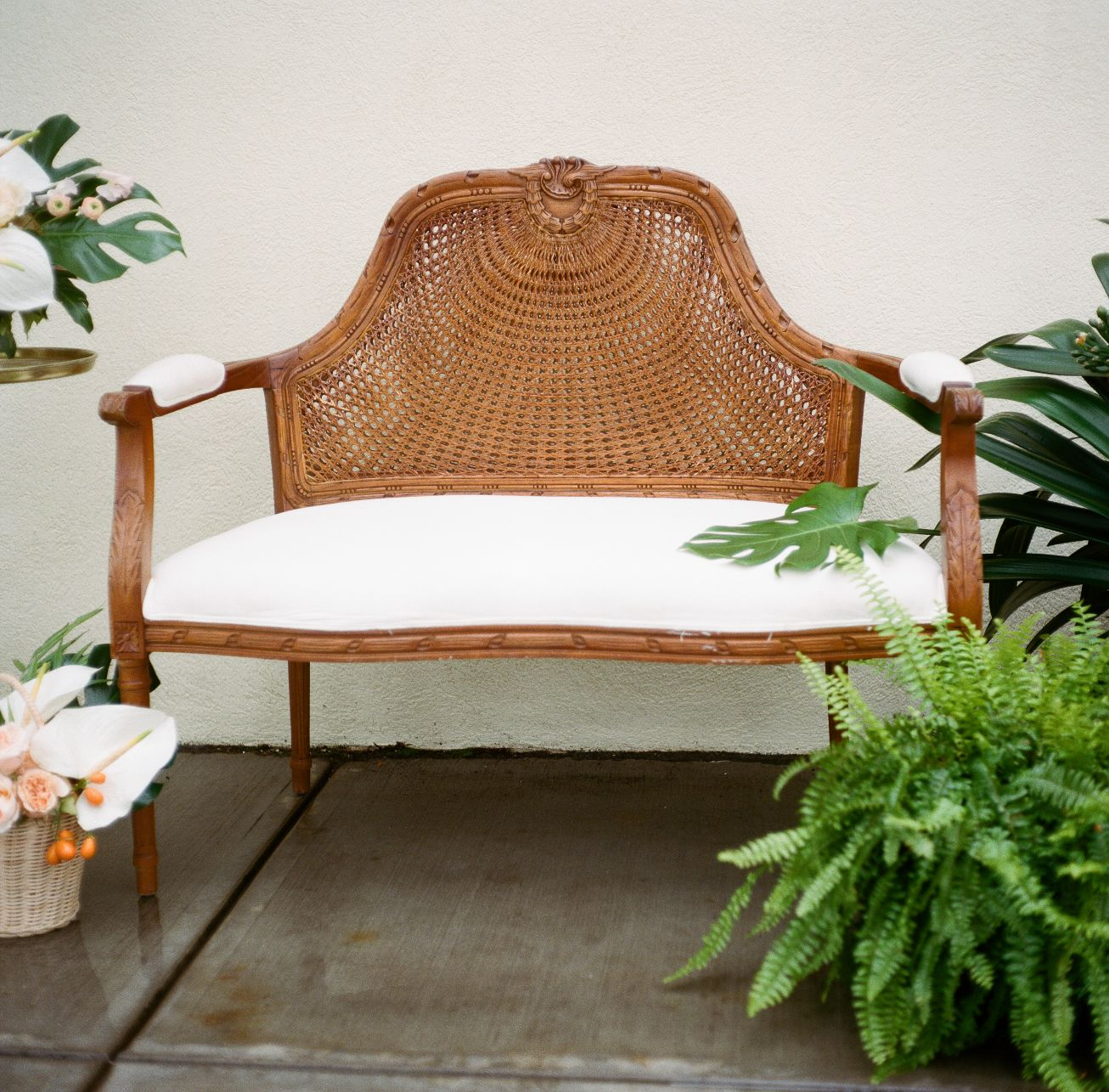 roger-williams-park-botanical-tropical-peach-daylynn-designs026.jpg
