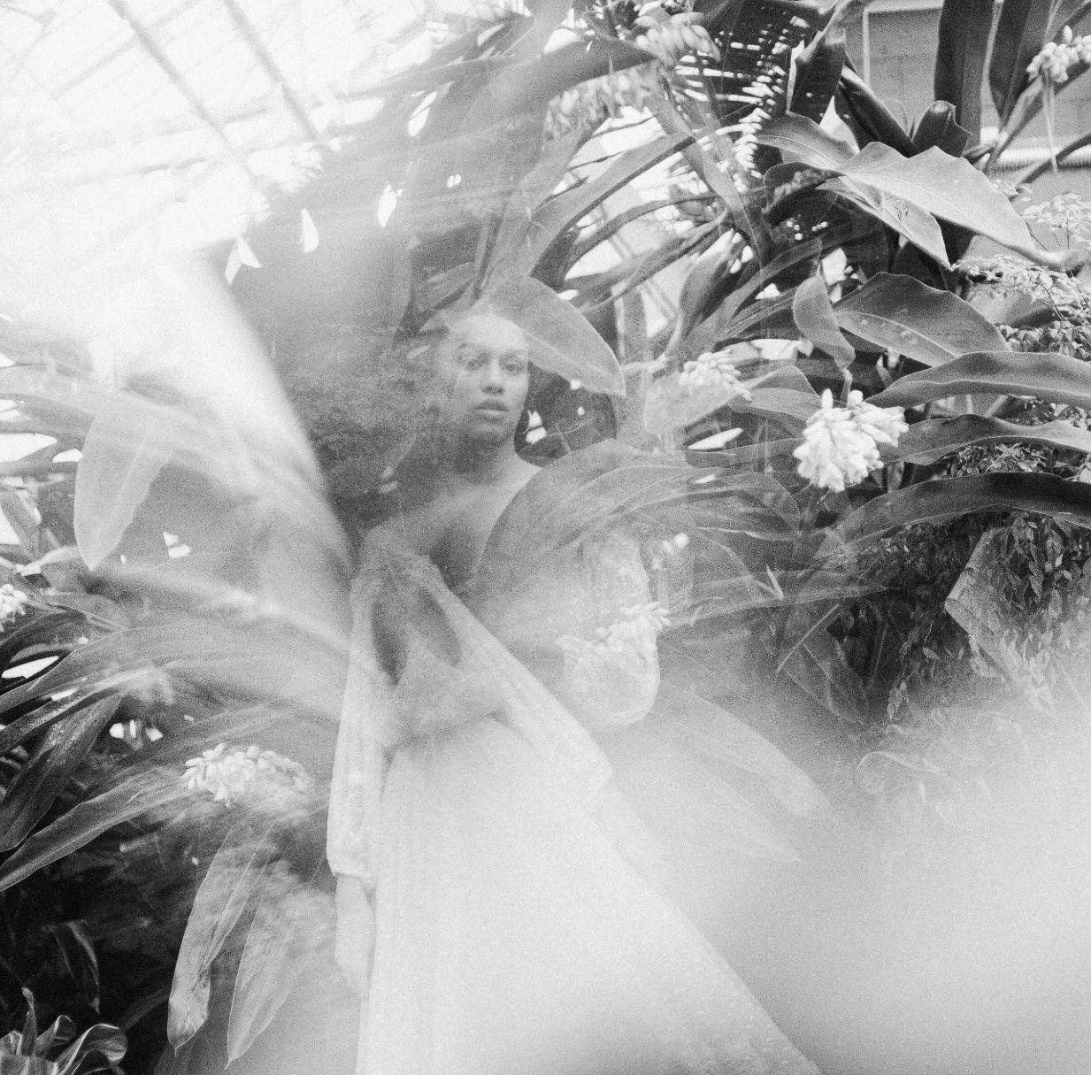 roger-williams-park-botanical-tropical-peach-daylynn-designs038.jpg