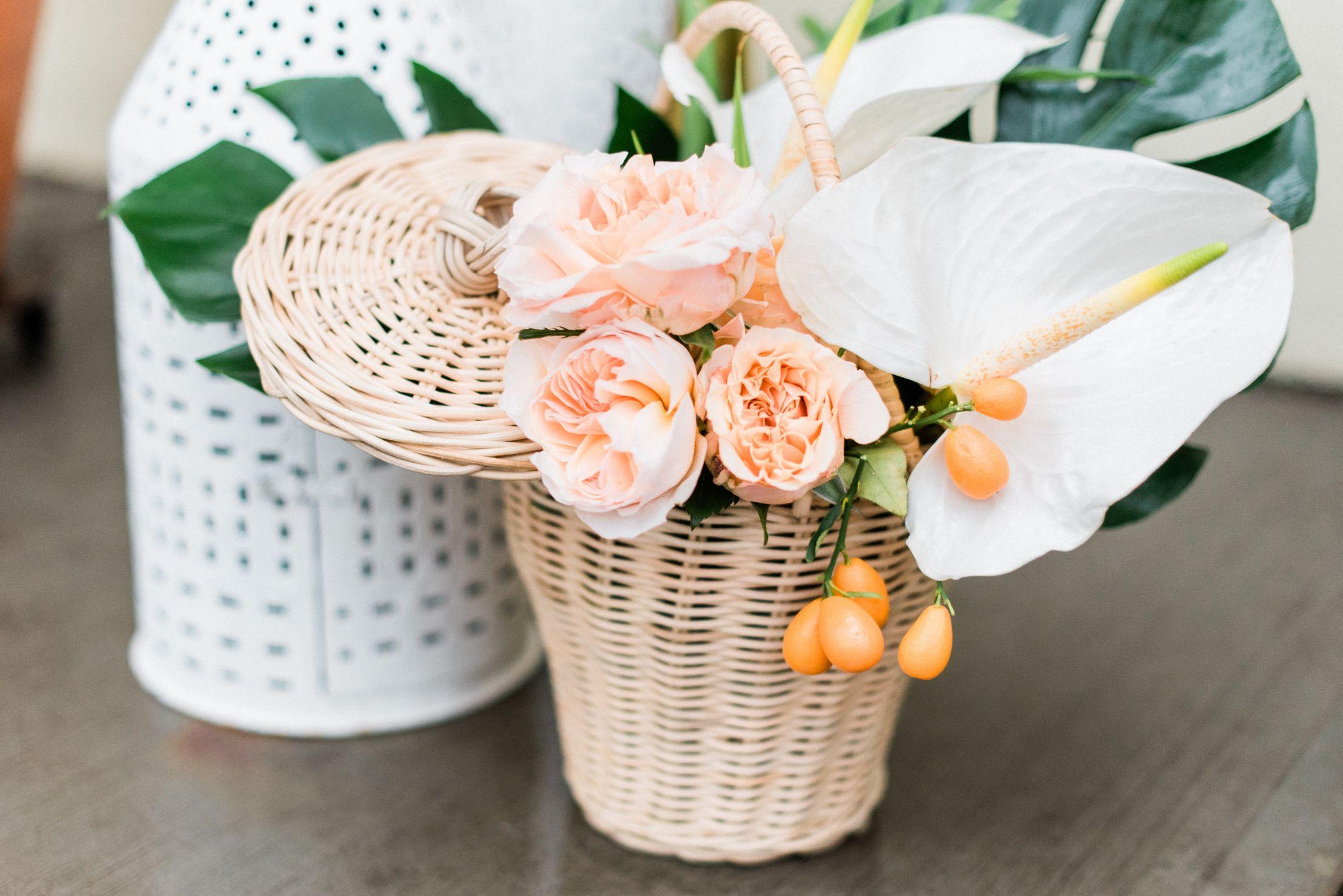 roger-williams-park-botanical-tropical-peach-daylynn-designs11.jpg