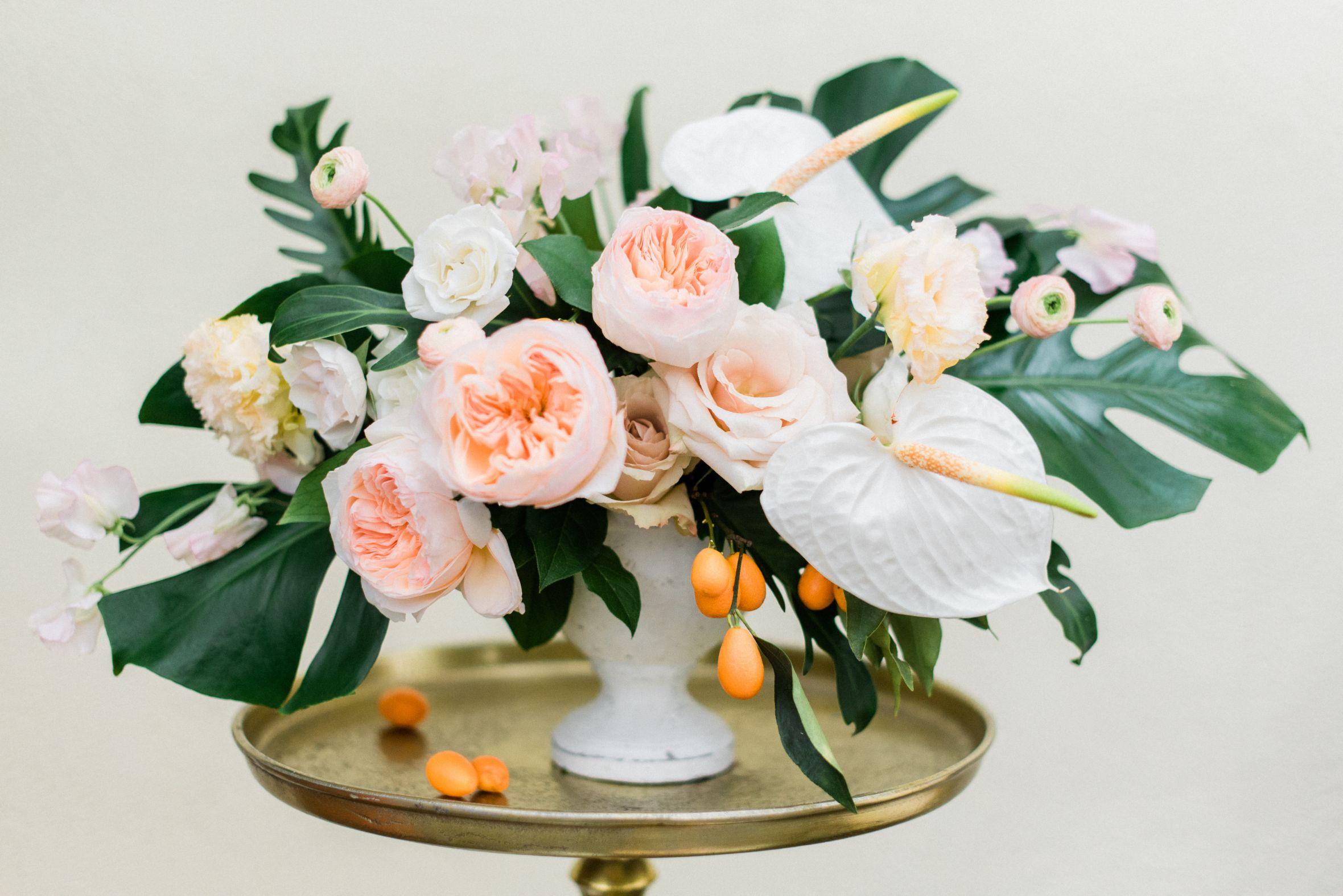 roger-williams-park-botanical-tropical-peach-daylynn-designs09.jpg